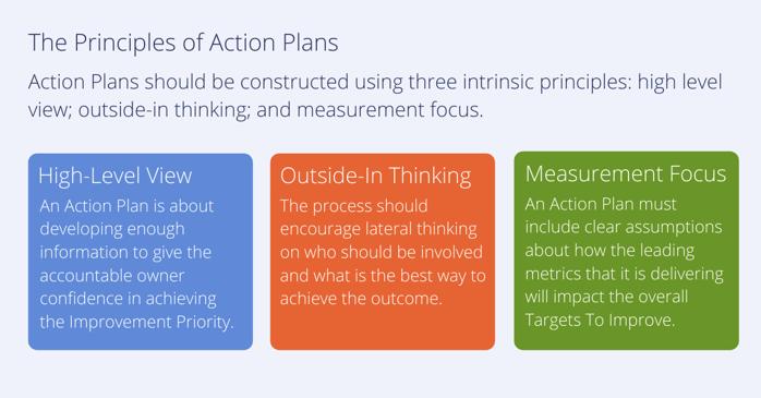 Action Plan Principles